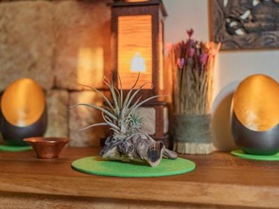 Eichenschränkchen mit Dekoration im LANAI Spa